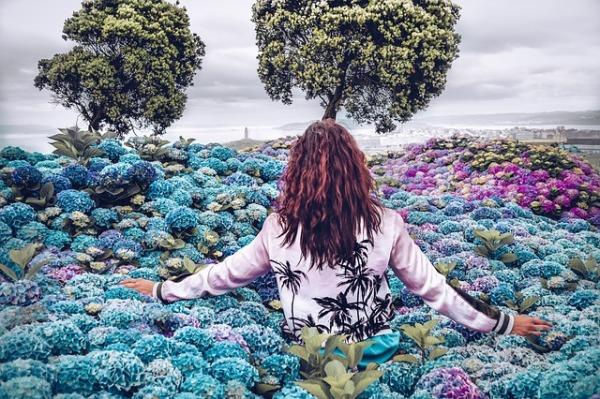 Femmes brunes vue de dos marchant dans un champ de géranium bleus